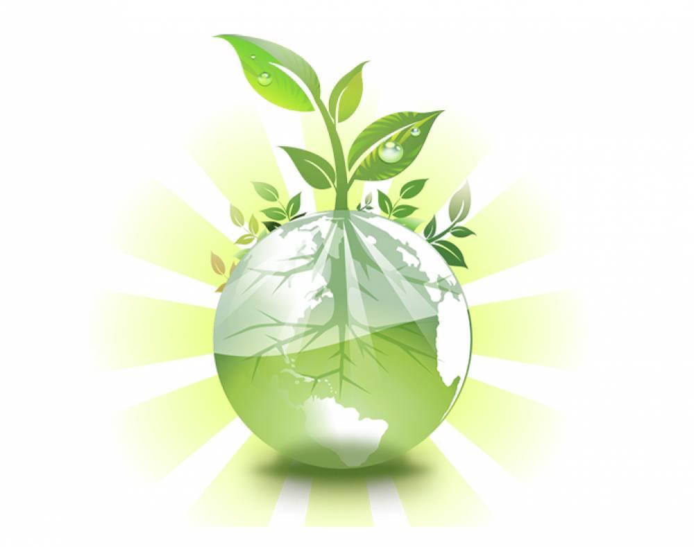 Вопрос утилизации упаковочного мусора